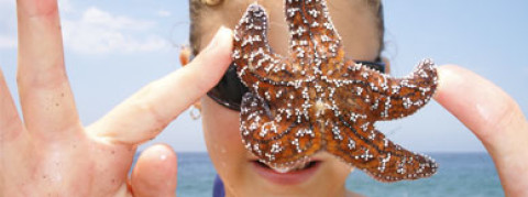 NEWPORT BEACH RESULTS